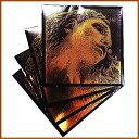 【送料無料】【即日発送O.K】エヴァ ピラッツィ ゴールド バイオリン弦4本セット【E.A.D.G】【G...