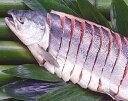 銀聖、銀毛、めじか、新巻鮭を超える 鮭 の脂のり♪送料無料【4キロ】前後芸能人御用達プレミア天…