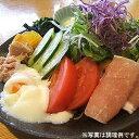 ラーメンサラダ10食分(麺・特製ダレセット)⇒1,980円【楽ギフ_のし】