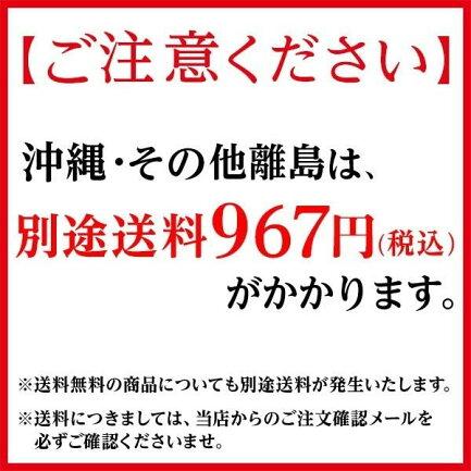 沖縄・その他離島は別途送料950円(税込)がかかります。