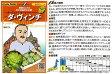 【イタリアの野菜】GustoItalia カーボルフィオーレ(ロマネスコタイプ) ダ・ヴィンチ(カリフラワー)/小袋