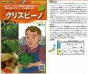 【イタリアの野菜】GustoItalia カーボロ・ヴェルザ クリスピーノ(ちりめんキャベツ サボイキャベツ)〔ダイヤ交配〕/小袋