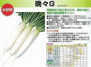 【ダイコン】晩々G(バンバンジー)〔雪印交配〕/小袋