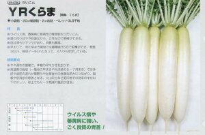 【ダイコン】YRくらま〔タキイ交配〕/小袋