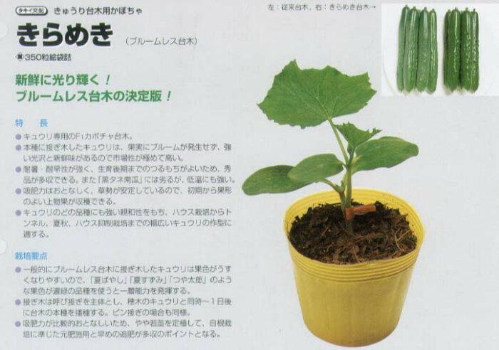【台木用品種】キュウリ用 きらめき〔タキイ交配〕/350粒
