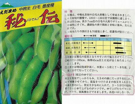 【エダマメ】緑豆系 秘伝枝豆〔サトウ育成〕/小袋