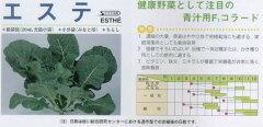 【芽キャベツ・コールラビ・ケール】エステ コラード〔サカタ交配〕/小袋