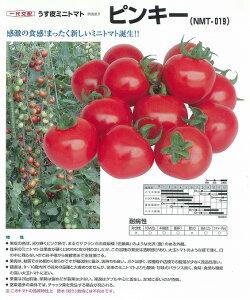【ミニトマト】ピンキー(一代交配)/小袋