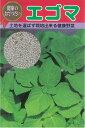 【その他の菜類】白えごま(エゴマ)〔固定種〕/20ml