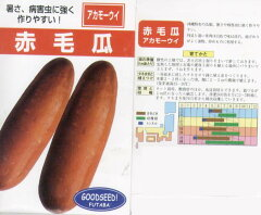 【シロウリ】赤毛瓜(アカモーウイ)(固定種)/小袋