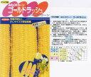 【トウモロコシ】みわくのコーン ゴールドラッシュ〔サカタ交配〕/小袋
