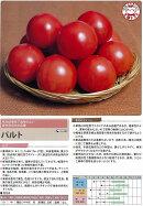 【トマト】パルト〔サカタ交配〕