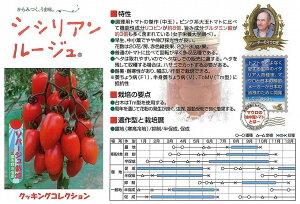 【トマト】シシリアンルージュ(マウロの地中海トマト)〔パイオニアエコサイエンス〕/8粒