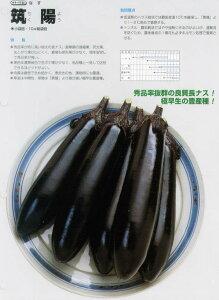 [ナス]筑陽(タキイ交配)/小袋30粒
