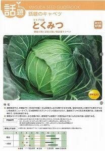[キャベツ]とくみつ(マスダ交配)/小袋2ml