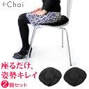 骨盤 クッション オフィス「座るだけ。骨盤立てて姿勢きれい」MARNA マーナ 骨盤座ぶとん 2個セット ブラック オフィス用【骨盤クッション 腰痛 クッション オフィス】【宅配便A】 その1