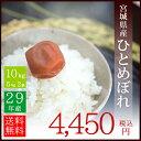 【新米】29年産 宮城県産 ひとめぼれ 10kg(5kg×2袋)【送料無料】