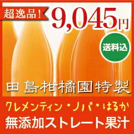【ギフトに最適】クレメンティン(プリンセスミツコ)・ノバオレンジ(マダム濃姫)・はるか(...