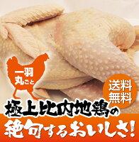比内地鶏鍋1羽丸ごと(中抜き)