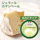 カマンベールチーズ フランス産 125ナチュラルチーズ 白カビ チーズ ワイン マリアージュ