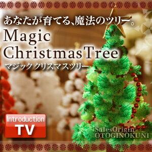 クリスマスツリー マジックツリー 『マジッククリスマスツリー』12時間で育つ不思議なクリスマスツリー【おとぎの国】【02P01Sep13】