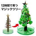 【メール便】 クリスマスツリー 卓上 マジック クリスマスツリー 12時間で育つ不思議なクリスマスツリー マジックツリー【おとぎの国】の商品画像