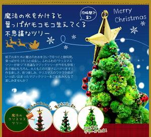 【本家】マジッククリスマスツリーシリーズ!『マジックツリー』12時間で育つ不思議なツリーラッピング包装しているからプレゼントに最適!【おとぎの国】【楽ギフ_包装選択】【マラソンP10】【クリスマスインテリア】