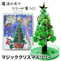 【送料無料】クリスマスツリー マジックツリー 『マジッククリスマスツリー』12時間で育つ不思議…
