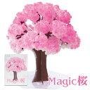 【メール便】 Magic桜 マジック桜 海外へのお土産に プチギフト magic sakura エア花見 インドア花見 室内花見 屋内花見 マジックツリー手作りで作る桜の木 おとぎの国の商品画像