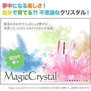 マジッククリスタル10日で育つ不思議なクリスタルMagicCrystal