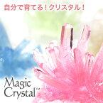 自由研究 小学生 マジッククリスタル 10日で育つ不思議なクリスタル クリスタル栽培キット 手作りキット子供と一緒にできる 世界で一つだけのクリスタル 小学生の自由研究 Magic Crystal