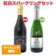 【送料無料】紅白スパークリングワイン 2本セット!ランブルスコ&金賞受賞!スパークリング入り【酒類】