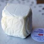 イタリア産 チーズ チット 35g