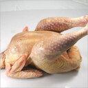 そのしっかりした肉質は三大地鶏に並ぶと評されてます青森県銘地鶏 シャモロック 丸鶏約2Kg 1羽(凍産直品)