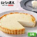 送料無料 チーズアントルメ6号