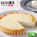 送料無料 チーズアントルメ7号