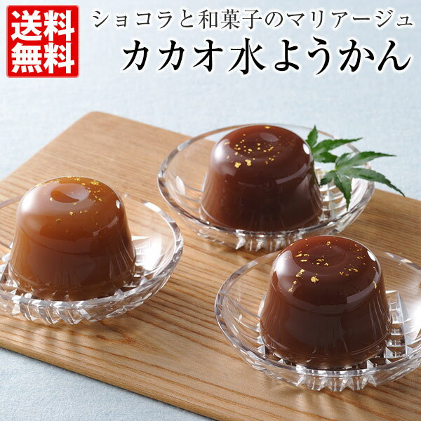 カカオ水ようかん (6個入)三枝俊介 ショコラティエ パレ ド オール