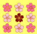 ♪蒔絵シール  桜3列 MA678 ステッカーファン