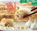 国産【生】にんにくたっぷり!!【にんにく生餃子 15個】ニンニク多めが好きな方にはたまらない