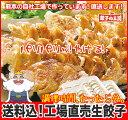 [餃子の王国]【送料込】工場直売生餃子 72個!(24個×3トレー)と、餃子のタレ10袋国産野菜に、九州産豚肉100%使用し熊本の自社工場で製造(安心素材で、パリパリ焼ける餃子です!)