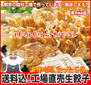 [餃子の王国]【送料込】工場直売生餃子 72個!(24個×3パック)国...