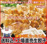 [餃子の王国]【送料込】工場直売生餃子 72個!(24個×3パック)国産野菜に、九州産豚肉100%使用し熊本の自社工場で製造(安心素材で、パリパリ焼ける餃子です!)