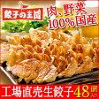 [餃子の王国]工場直売生餃子48個(24個×2パック)