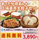 【送料無料】あったか肉まん+工場直売生餃子セット