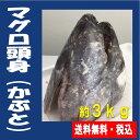 ★マグロ頭身カブト(約3kg)★鮪兜焼き・かぶと煮が人気です...