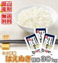 【精米】山形県産はえぬき 30kg(10kg×3袋)平成30...