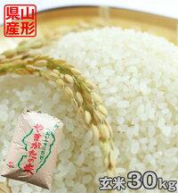 【玄米】山形県産つや姫30kg【送料無料】