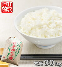 【玄米】山形県産はえぬき30kg【送料無料】