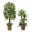 光触媒インテリアグリーン2点セットベンジャミン幸福の木ドラセナフェイクグリーン大型