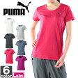 プーマ【PUMA】レディース CD 半袖 Tシャツ 839004 1607 クレバードライ トップス ウェア シャツ ジム フィットネス スポーツ ウィメンズ 婦人